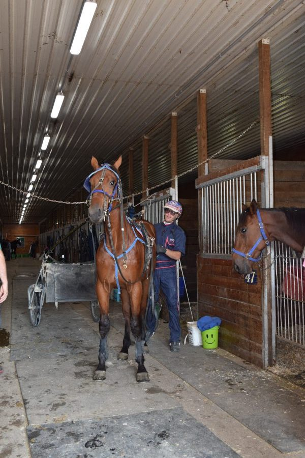 standardbred fractional ownership 1% stable harness racing