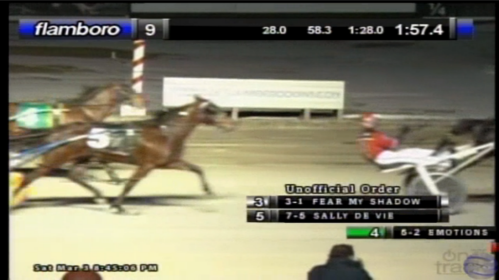 sally de vie flamboro downs 2nd place fractional ownership
